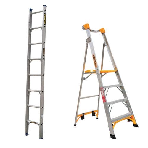 Ladders & Platforms