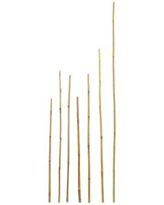 Bamboo stakes for landscaping